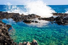 makapu'u tide pools, oahu  tara- i will take you here!!