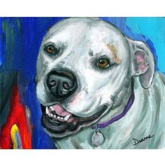 American Bulldog on Blue Dog Art 8x10 Print, Painted by Dottie Dracos