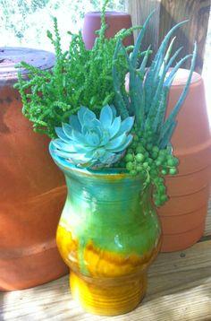 Handmade Pottery Succulents