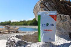 Pet Kelp Skin & Coat Formula