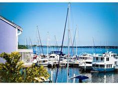 Another boat rental!  Fishville marina