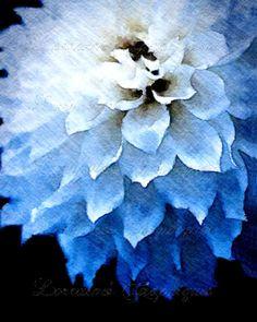 The Blue Dahlia 2:  A Watercolor Mixed Media Fine Art Print, Minimalist Macro Floral Still Life Home Decor