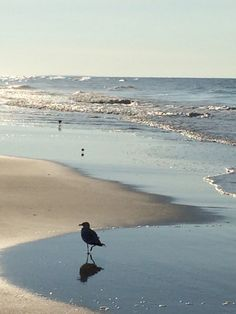 My favorite place to be is by the sea. Atlantic Beach, NC.