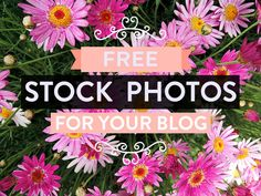 Free Stock Photos For Your Blog – Part 4