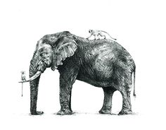 Gentle Giant, African Elephant, Pencil Drawings, New Work, Behance, Gallery, Check, Illustration, Animals