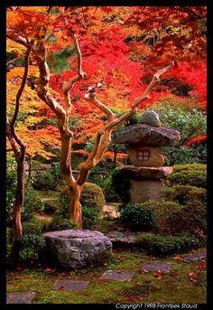 Garden of Enkoji temple, Kyoto@Frantisek Staud the real japan, japan, garden, park, japan, landscape, japanese, public, travel, tour, explore, fuji, mt fuji, flower, plant, tree, pond, lake, pool, bonsai, gardening, garden design, layout, planting http://www.therealjapan.com/subscribe/