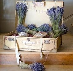 dried lavender...beautiful and smells wonderful and relaxing
