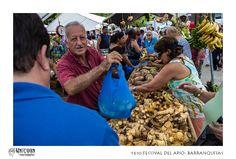 16to FESTIVAL DEL APIO- BARRANQUITAS    Photography & Editing: Félix De Jesús @ Unicorn Photography ©2013 Puerto Rico