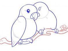 how to draw lovebirds step 8