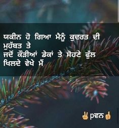 Cute Quotes For Life, Good Thoughts Quotes, True Quotes, Qoutes, Punjabi Captions, Punjabi Love Quotes, Whatsapp Status Quotes, Punjabi Status, Punjabi Poetry