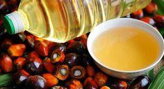 Palmiye Yağıyla Gelen Kanser Hakkında - http://m-visible.com/palmiye-yagiyla-gelen-kanser-hakkinda.html