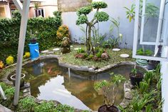 24 Best Desain Taman Kolam Ikan Koi Images Garden Design