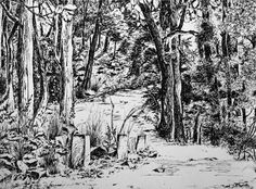 Inkpen drawing - Sushruta Chetan