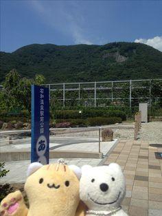クマ散歩:石和温泉に品行方正なクマ出没 The Bear took a walk around Isawa Onsen!♪☆(^O^)/  #石和温泉#クマ出没#品行方正