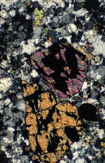Light microscopy section of rocks from Big Bend National Park Fluorescence Microscopy, Human Tissue, Microscopic Images, Macro And Micro, Crazy People, Textures Patterns, Bugs, National Parks, Rocks