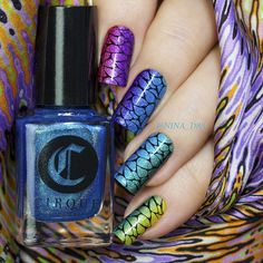Stamping over vertical gradient - I used all six colors from Juicy Collection by Cirque Colors for this mani ( check my previous post for the thumb) This collection of six gorgeous holos is being released today at www.cirquecolors.com - thank you so much Annie @cirquecolors  Stamped with Lesly plate and MdU Black
