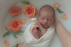 Newborn Milk bath, baby milk bath www. Milk Bath Photography, Toddler Photography, Newborn Baby Photography, Photography Ideas, Color Photography, White Photography, Milk Bath Photos, Bath Pictures, Newborn Pictures