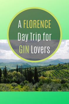 Travel Guides, Travel Tips, Travel Around The World, Around The Worlds, Places To Travel, Travel Destinations, Gin Distillery, Gin Lovers, Europe Holidays