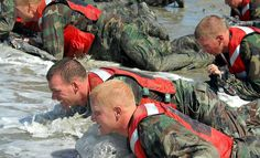This 12 week US navy seal training program will prepare you to pass the Physical Screening Test. Navy Seal Training Program, Training Programs, Navy Seal Workout, Barista Training, Military Workout, Tactical Training, Warrant Officer, Us Navy Seals, Team Building Activities