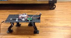 DIY: Stompy - Arduino Quadruped Robot - Robotic Gizmos