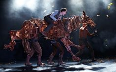 Warhorse is amazing!Saw a live performance in London :3