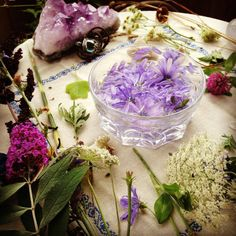 One Willow Apothecary ~ wildcrafted magic ~ a must read  ~~~♥~~~