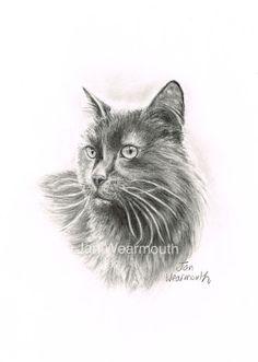 Black cat drawing custom portrait in by PetArtGallery on Etsy, £45.00