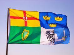 Bandeira dos Catro Reinos de Irlanda
