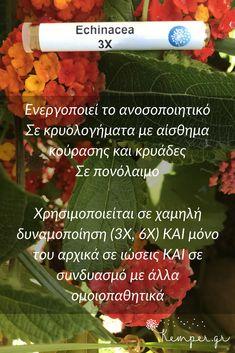ΟΜΟΙΟΠΑΘΗΤΙΚΗ ΓΙΑ ΠΑΙΔΙΑ - Echinacea #paidi #ygeia #παιδια #υγεια