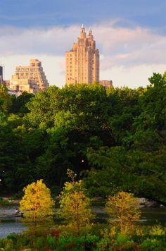Central Park 7503 Photograph - Central Park 7503 Fine Art Print