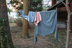 Washing line elephant.