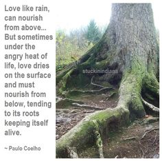 """Love like rain, can nourish from above, drenching couples with a soaking joy. But sometimes under the angry heat of life, love dries on the surface and must nourish from below, tending to its roots keeping itself alive."" ~ Paulo Coelho, By the River Piedra I Sat Down and Wept #quote"