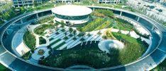 Peyzaj mimarlığı  Doğal ve kültürel kaynakları ve fiziksel çevreyi insan yararı, mutluluğu, güvenliği, sağlığı ve