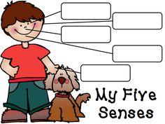 Miss Mack's Kindergarten: Update and Five Senses