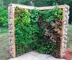 Five Ways to Grow Edibles Vertically Growing salads, fruits and herbs vertically not only allows urban dwellers to grow food in small spaces, but follows the permaculture principles of stacking, using renewable resources and making the most of the edge.: