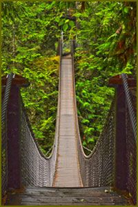 Lynn Canyon Ecology Centre / Suspension Bridge - Loved this hike, beautiful waterfalls and pools to view (S Buck) Lynn Canyon Suspension Bridge, Ecology Center, Beautiful Waterfalls, Summer Travel, Travel Ideas, Pools, Vancouver, Seattle, Centre