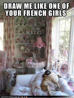 i have a pug obsession..