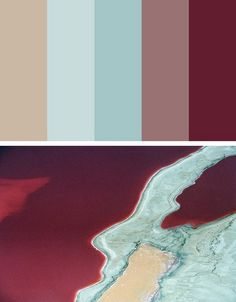 Palette - colors of life (4)