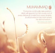 And never loose hope in the mercy of Allah