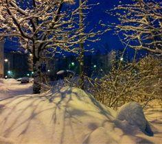 Talvea