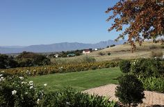 Kloovenburg South Africa, Golf Courses, Cape, Mountains, Nature, Travel, Outdoor, Beautiful, Mantle