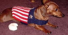 JENNIFER'S PATRIOTIC DOG JACKET Crochet Pattern - Free Crochet Pattern Courtesy of Crochetnmore.com