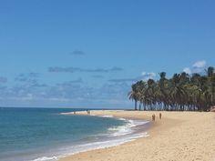 Praia do Gunga , Maceió -Al