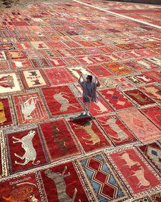 Chris Zielecki - suzani: A girl in Carpetland, Iran. Wall Carpet, Carpet Stairs, Rugs On Carpet, Hallway Carpet Runners, Cheap Carpet Runners, Stair Runners, Persian Carpet, Persian Rug, Viajes