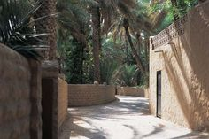 Al Ain Oasis Jebel Hafeet Arabian Wildlife Park prev next Abu Dhabi, Dubai, Wildlife Park, Still Life Art, Southwest Style, United Arab Emirates, Travel And Tourism, Wonderful Places, Old Town
