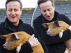 """DAVID Cameron once put a """"private part of his anatomy"""" into a dead pig's mouth during a bizarre initiation ritual, it has been claimed."""