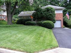 10831 Charles Drive, Fairfax, VA  22030  Front . . . nicely manicured garden