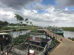 Everglades, Miami