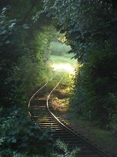 I grew up with train tracks in the backyard. Think I was on the wrong side of the tracks. No, I know I was.
