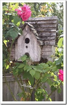 rustic birdhouse with roses